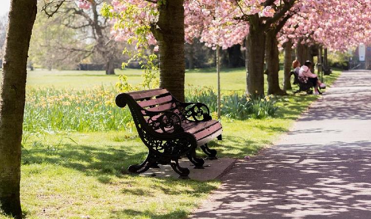 生命の樹 セフィロトの樹 treeoflife 笑顔の樹 treeofsmile 春夏秋冬 四季 受け取りの法則